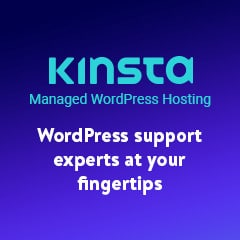 kinsta wordpress support